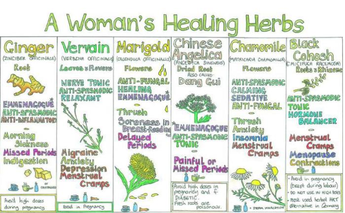 A Woman's Healing Herbs